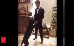 sirjannewsSushant+Singh+Rajput%5C%27s+caretaker+claims+-+Actor+sent+money+to+take+care+of+dogs+a+day+before+death