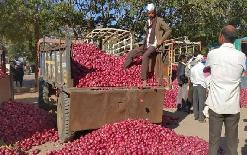 sirjannewsIndia+imposed+export+ban%2C+Nepal+started+crying+onion+tears%2C+price+reached+Rs+150+kg+in+4+days